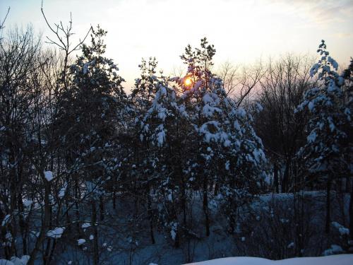 zimowy zachód słońca #zima