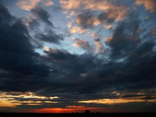 w zasadzie nie fotografuję samego nieba, jak nic poza chmurami na nim nie widać, bo to taka prościzna, ale czasem coś na tym niebie zagra barwą, ułoży się ciekawie i... warto odejść od zasad #niebo