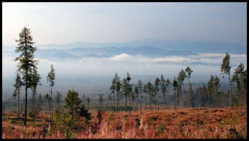początek cesty z Tatranskej Polianky k horskému hotelu Sliezsky dom