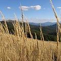 Połoniny #Góry #Bieszczady #Rozsypaniec #Halicz #Tarnica