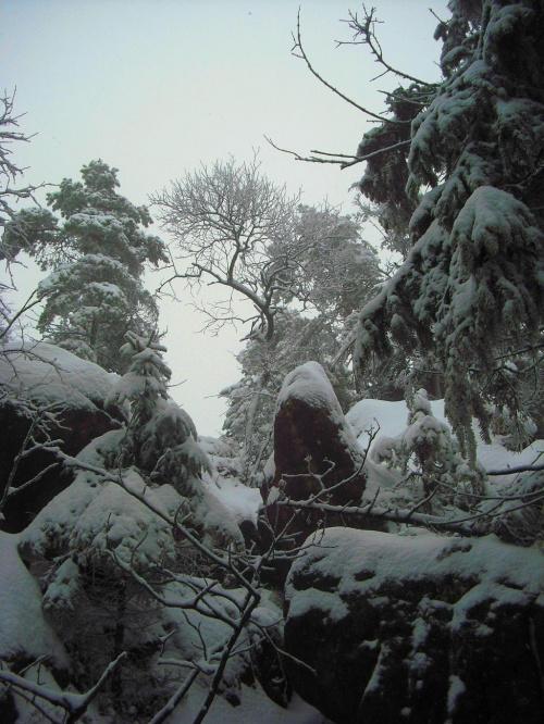 Szczeliniec Wielki 12.12.2009