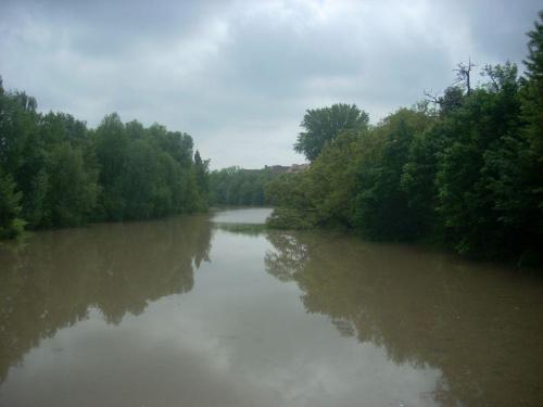 22 maja 2010, godzina 13:00, widok na Oławkę- nurt stoi w miejscu #Wrocław #powódź