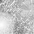 fotokopia #biel #czerń #fotokopia