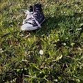 #natura #przyroda #strokrotka #trampki #trawa #zielone