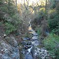 #Cypr #las #potok #jesień