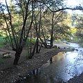 Cypr,przy moście Kelefos #Cypr #drzewa #rzeczka #potok #odbicie #las #jesień #piknik #słońce