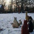 3D -Grzybowo /k. Wrześni -11.01.2009 #Grzybowo #TurniejŁuczniczy